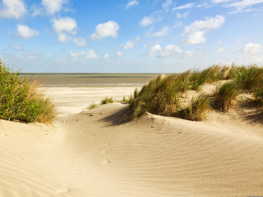 beach and dunes at knokke-heist, belgian north sea coast